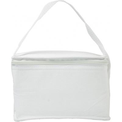 Image of Six can cooler bag.